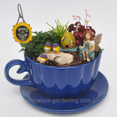 Miniature Gardening Top Ten Container Ideas