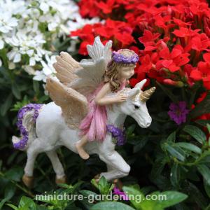 Gypsy Fairy Garden Miniature /'Believe in Magic/' Sign Miniature Garden Signs Fairy Gardening Fairy Garden Accessories