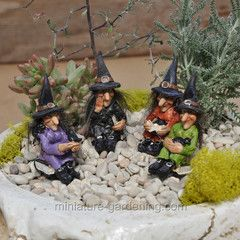 Sitting Witches