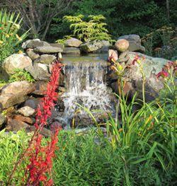 Waterfall in Display Garden