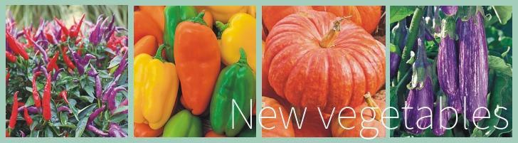 Various Vegetable Varieties