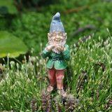 A Day in the Life of a Miniature Garden Gnome
