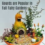 Gourds are Popular in Fall Fairy Gardens