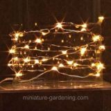 All That Sparkles and Shines in the Miniature Garden