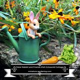 Peter Rabbit and Friends Visit Cotswold Cottage