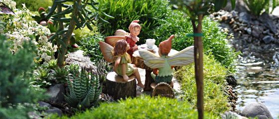 All About Fairy Gardens
