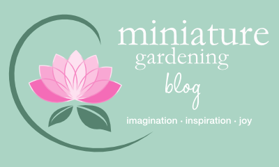 Miniature Gardening Blog
